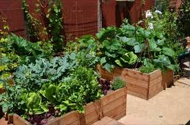 Small Picture Vegetable Garden Ideas For Small Yards erikhanseninfo