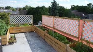 Small Picture Interior Outdoor Vegetable Garden Design Ideas Fence