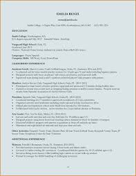 Download Best Resume Format Letter Format Template