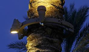 palm tree ring light fixture ring only