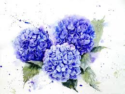 poetic realistic flowers watercolor paintings