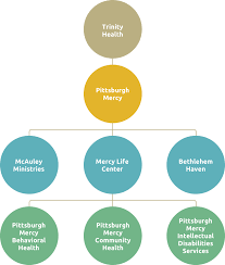 Our Org Chart Pittsburgh Mercy