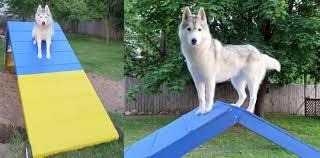 diy a frame for backyard agility