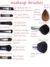 highlighting and contouring continued makeup brushes to use included