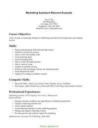List Of Skills For Cv Sansurabionetassociatscom