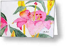 Lily Painting by Wade Binford