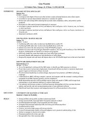 Ebay Seller Resume Sample Seller Resume Samples Velvet Jobs 2
