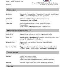 cv template word francais cv template francais curriculum vitae example en francais cmbzb