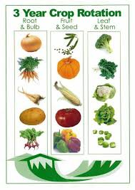 Crop Rotation Chart Vegetable Gardening Crop Rotation Chart Edible Garden Lawn Garden Vegetable