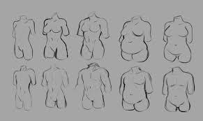 Body Type Chart Ki Rei