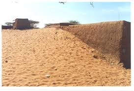 causes and impacts of land degradation and desertification case  causes and impacts of land degradation and desertification case study of the sudan
