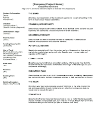 New Executive Summary Template Medium Size Large Report Evaluation Gorgeous Resume Margin Size
