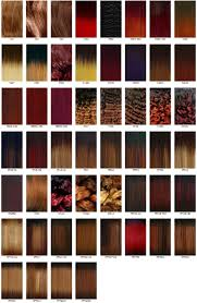 350 Hair Color Chart The Wigs And Hair Extensions Colour Guide
