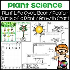 Plant Chart Plant Science Diagrams And Booklet