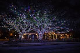 wrapped tree in multi colored lighting from the perfect light dallas and houston