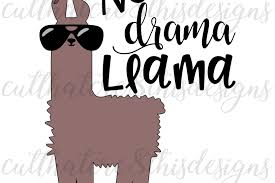 Sunglasses Quotes Awesome No Drama Llama Animal Llama Cool Su Design Bundles