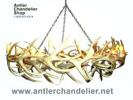 antler chandelier how to build an