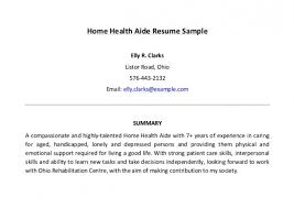Home Health Aide Sample Resume Beauteous Download Home Health Care Resume Best Resume Gallery Www
