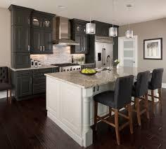Transitional Kitchen Lighting Innovative Cabinet Style Coralville Mode Denver Transitional