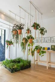 Full Size of Plant Stand:indoor Hanging Basket Plant Standindoor Stand  Fantastic Image Ideas Best ...