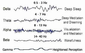 Alpha Brain Waves Everything You Need To Know