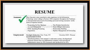Professional Summary Resume Adorable Professional Summary Examples Musiccityspiritsandcocktail