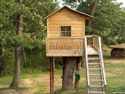 Tree Fort Ladder Gate Roof Finale  Tree Houses Tree House Treehouse For Free