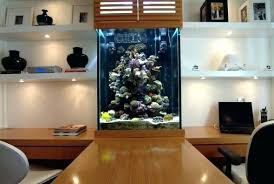 aquarium furniture design. Aquarium Furniture Design Ideas Integrate Designs In The Wall Or Living Room House E