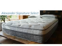 nest bedding alexander signature series