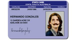 Fake - Law Cards Child Identification
