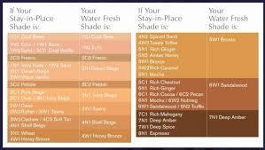 Foundation Match Chart Foundation Match Chart Luxury L Oreal True Match Foundation