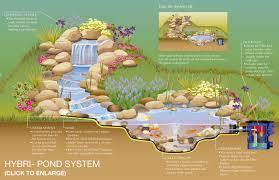 Small Picture Garden Ponds Design Ideas Home Design Ideas
