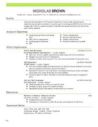 Typical Resume Format Fascinating Free Professional Resume Format Packed With Oracle Resume Format