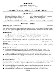 Resume Core Competencies Examples Resume Template Core