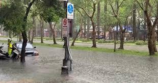大台北地區雨勢大 新店、文山等多區一級淹水警戒【更新】 2021/6/4 13:27 (6/4 16:08 更新) 受颱風來襲影響,4日北市午後降下大雨,基隆路3段出現淹. Tssy1us7aibrim