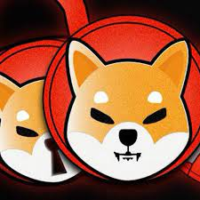Shiba Inu coin: Things you need to know about the 'Dogecoin Killer' -  Birmingham Live