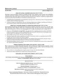 resume writers dallas executive resume writers sample writer services  executive resume writers executive resume writing services