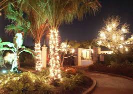 outdoor tree lighting ideas. Backyard Tree Lighting Ideas Fashionlite How To Decorate Outdoor Trees With Lights