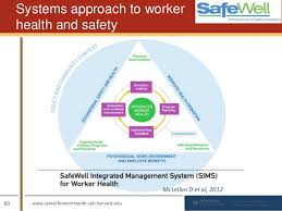 sims charting charting the path to total worker health a practitioners guide to