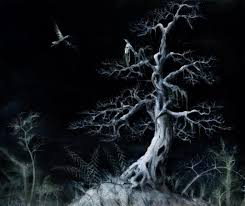 tree by night paintings of trees at night with birds