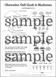 Spore Print Color Chart Identifying Mushrooms Plus A Field Guide Printable