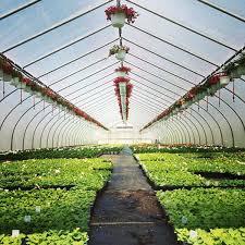 garden center nj. Gaskos Garden Center Nj Home Design App