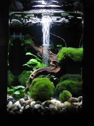 Amazing Aquarium Design 20 Amazing Aquarium Design Meowlogy Amazing Aquariums