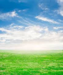 grass and sky backgrounds. Brilliant And Fresh Grass With Sky Background Free Photo On Grass And Sky Backgrounds