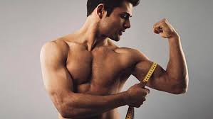 Bodybuilding Body Measurement Chart The Truth About Bodybuilding Arm Measurements T Nation