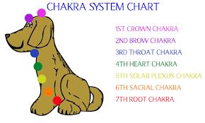 Chakra System Chart Chakra System Chart The Crown Chakra The Third Eye Chakra