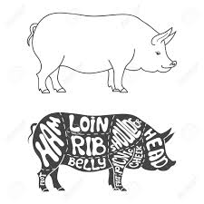 Pig Butcher Chart Art Pig Butcher Drawing At Getdrawings Com Free For Personal