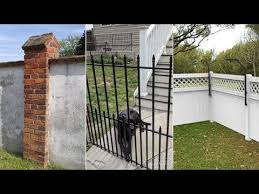 10 backyard fencing ideas for your dogs