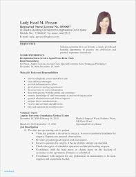 Simple Job Resume Outline Best Resume Samples Pdf Download Valid Sample Job Resume Pdf