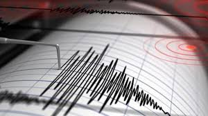 Son dakika! Gaziantep ve çevresi fena sallandı! Deprem korkuttu - Son Dakika  Milliyet